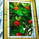 Orange Tree 02.jpg